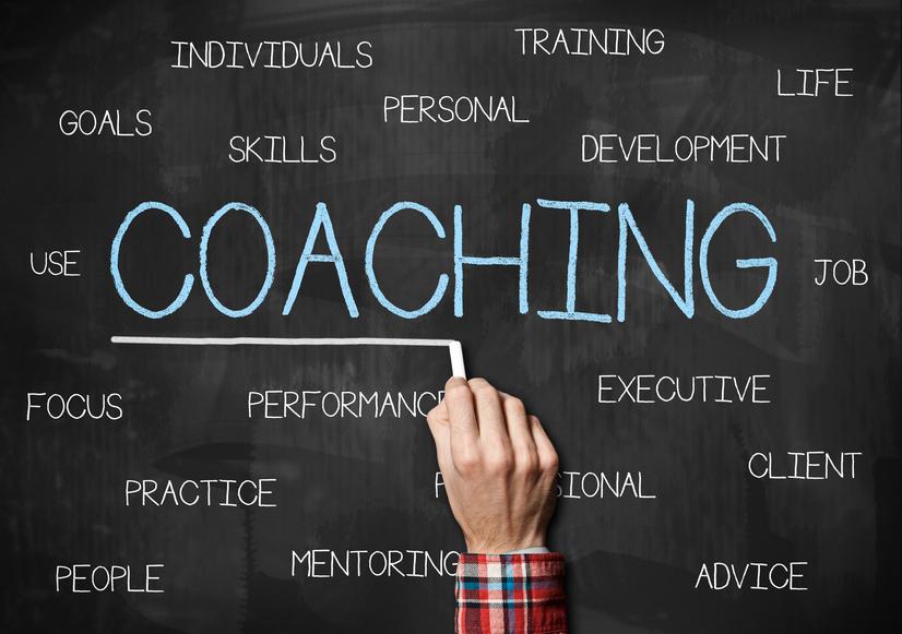 Performance Coaching / Coaching
